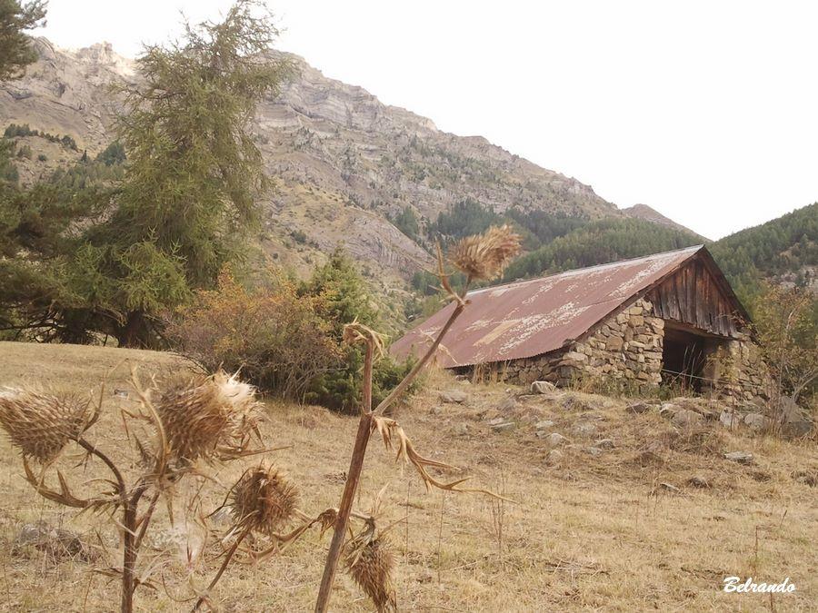 Grange, route des Combes entre Saint-Bonnet et Chaillol 1600