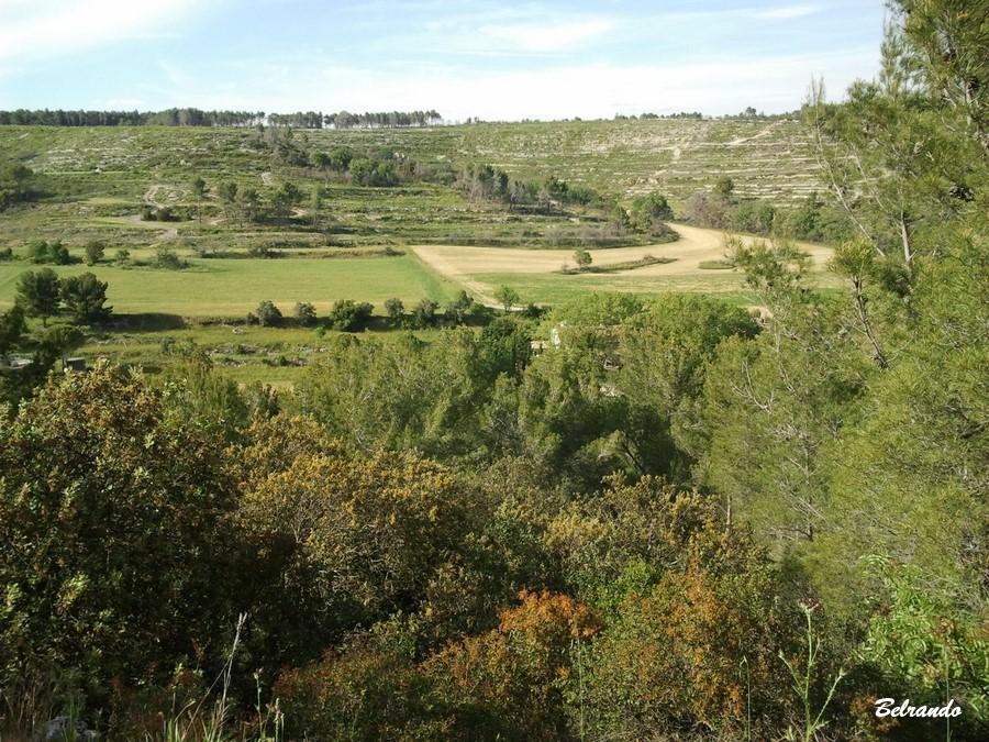 Vue sur les collines du domaine Saint-Martin propriété communale