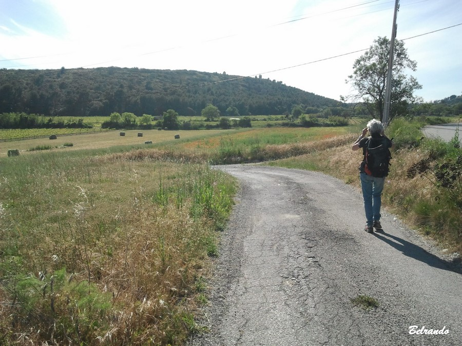 Portion de route avant le hameau de Valsère
