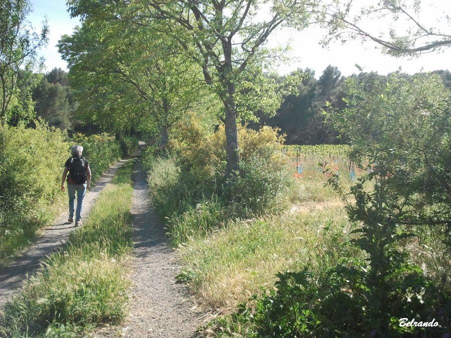 Chemin rural après le hameau