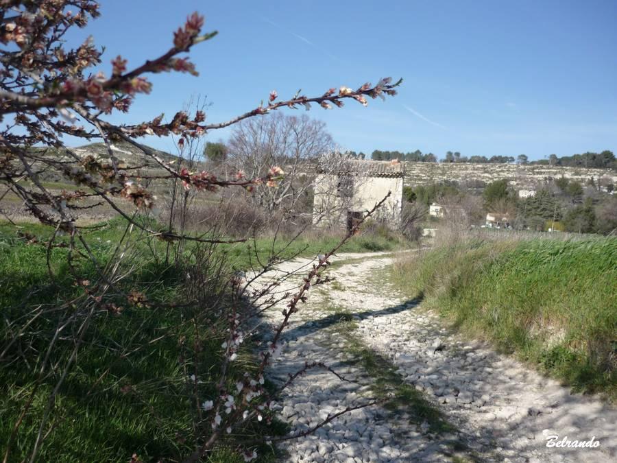cananon chemin du boulidou