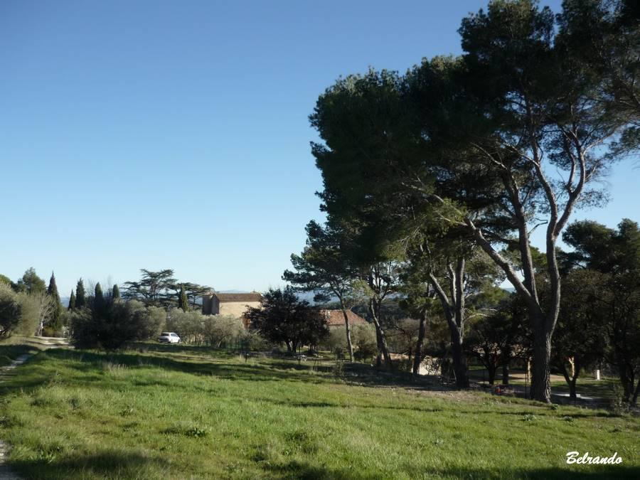 Domaine Saint-Martin