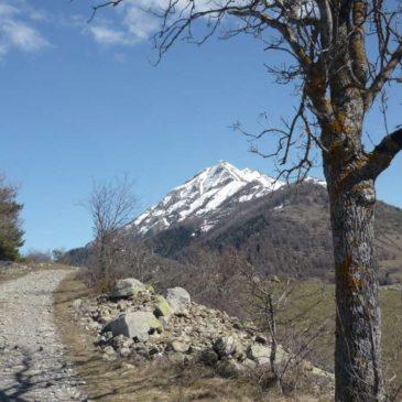 Balade au plateau de Libouze entre Saint-Léger-les-Mélèzes et Ancelle