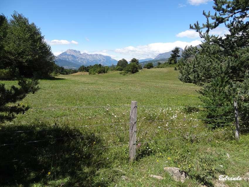 Vue sur la montagne de Farraut. prairies