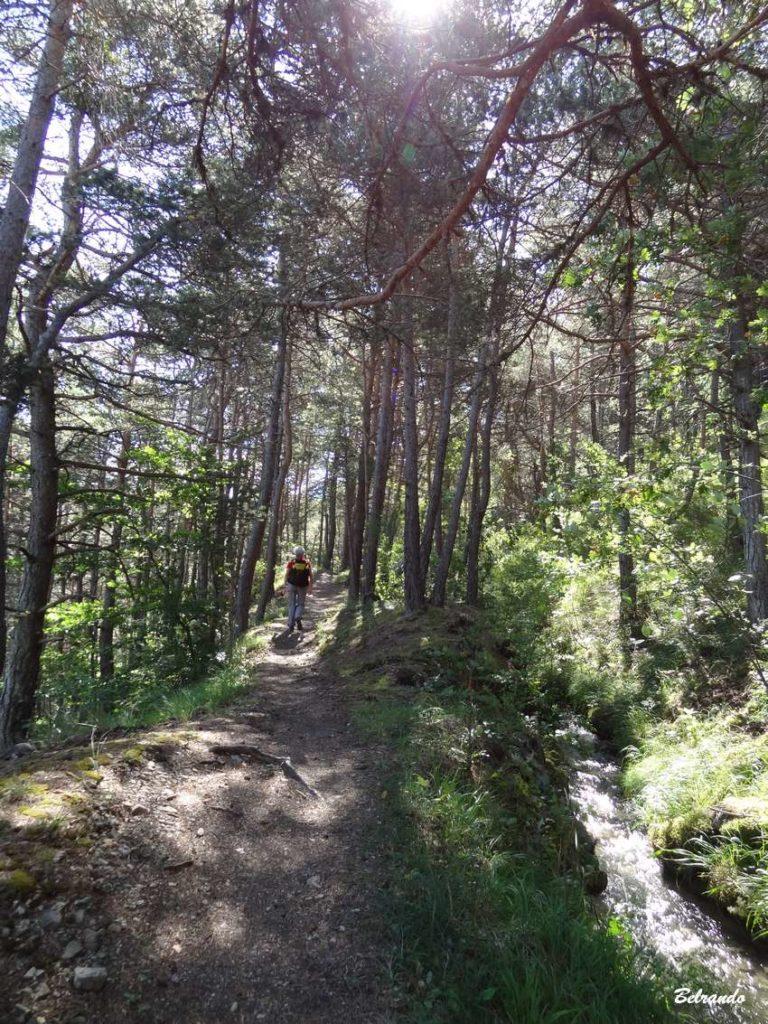 sentier et canal