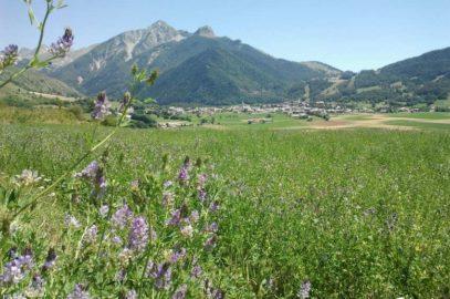 Sainfoin, plateau d'Ancelle au loin et petite et grande Autane.
