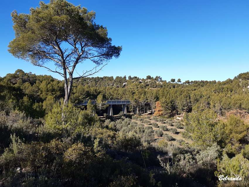 aquedic de doudon et oliviers